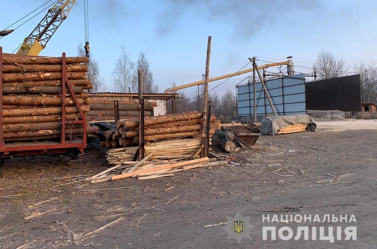 Поліція проводить обшуки на лісопереробних підприємствах Житомирщини