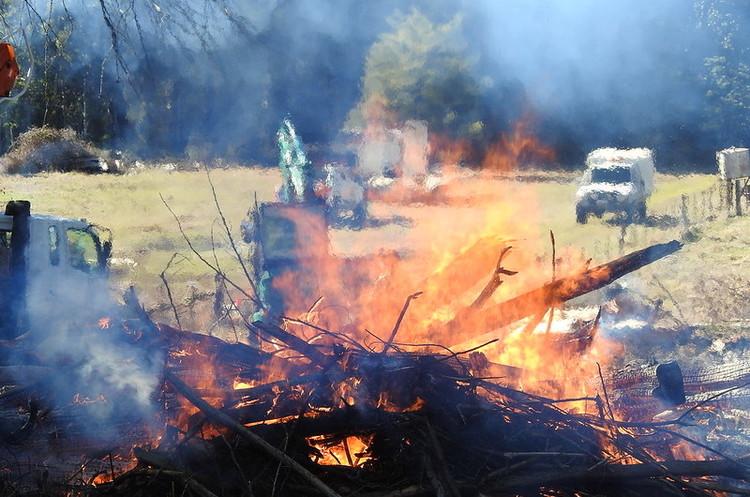 Австралія оголосила НС через лісові пожежі