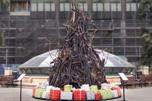 У Сіднеї поставили обгорілу різдвяну ялинку – символ лісових пожеж в Австралії