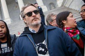 Виконавця головної ролі у фільмі «Джокер» затримали під час протестів у Вашингтоні