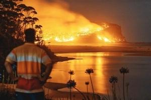 Банк Westpac оцінив прямі збитки від пожеж в Австралії