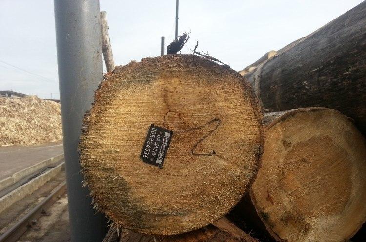 Гончарук: з лютого ринок деревини має працювати через конкурентні процедури