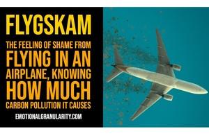 У Швеції розвивається рух «Літати соромно»: пасажиропотік авіакомпаній падає