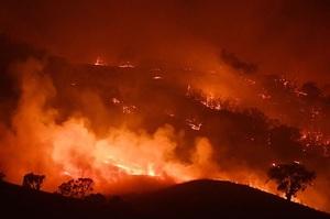 Пожежі в Австралії показують, яким буде майбутнє всієї Землі – вчені