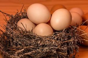Гонконг змінив умови ввезення яєць з України