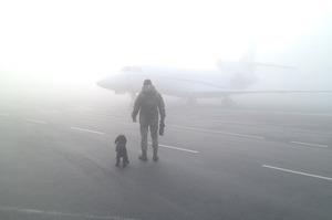В аеропортах Києва 28 та 29 січня скасовано кілька авіарейсів