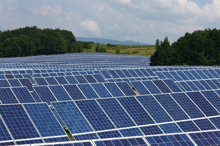 Українські виробники «зеленої енергії» закликали Зеленського припинити «брутальну» атаку на галузь