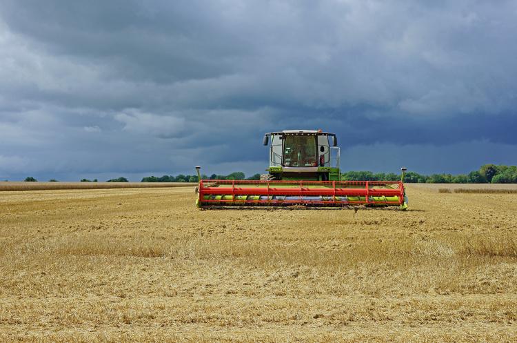 Поставки зерна на зовнішні ринки вже сягнули понад 37млнт з початку 2019/2020 МР