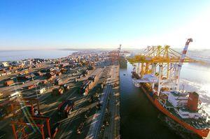 Один з найбільших портових операторів DP World заходить в Україну