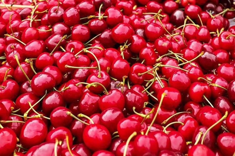 Україна зайняла місце в трійці найбільших виробників вишні і порічки в світі
