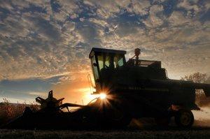 Слабкий ріст ВВП у IV кв.-2019 пов'язаний зі зсувом часу збору врожая – Мінекономіки