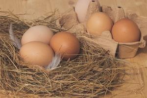 Україна в січні скоротила експорт яєць на 10%