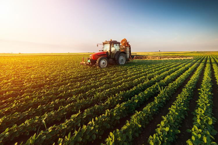 Уряд визначив 6 основних напрямів фінансування аграріїв у 2020 році