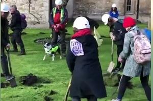 Активісти зіпсували газон в Кембриджі через співпрацю його керівництва з нафтовиками