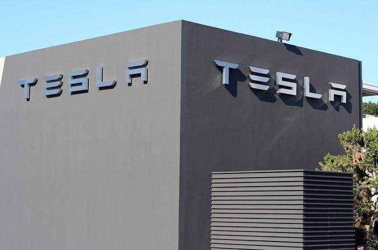 Суд дозволив рубати ліс для будівництва заводу Tesla в ФРН