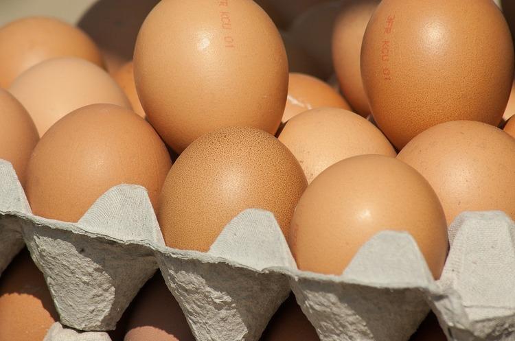 Молдова заборонила імпорт м'яса птиці та яєць з України