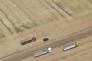 Уряд спростить пересування сільськогосподарської техніки