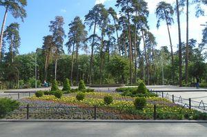 Київська влада витратить на ремонт парків у 2020 році 500 млн грн