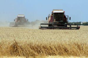 Експортери зерна просять уряд скасувати обов'язкову рециркуляцію при фумігації зерна