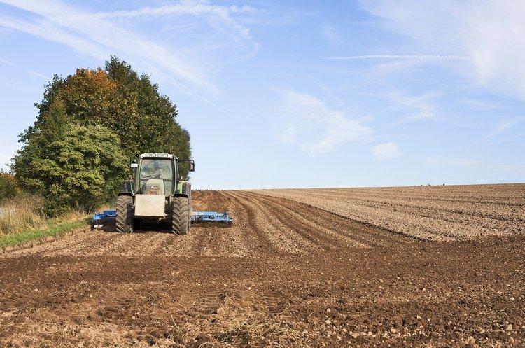 «Чиновник – гірший за вірус»: як аграрії проводять посівну в умовах карантину