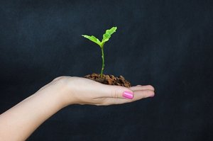 Госпомощь аграриям: отменить нельзя оставить