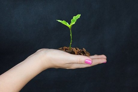 Держдопомога аграріям: скасувати не можна залишити