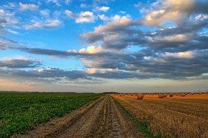 «Мала земля»: як депутати зняли мораторій, проваливши реформу