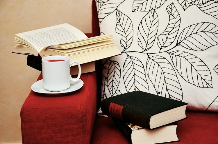 Домашнее образование: топ-5 книг для прочтения на карантине