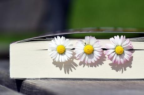 «Як я провів карантин»: топ-5 книг про бажання і можливості