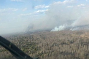 Горить ліс у Чорнобильській зоні, начальник ДЕІ вимагає підвищити штрафи за підпал