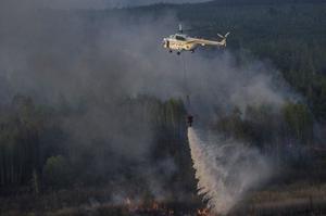 Пожежа в Чорнобильській зоні триває, поліція встановила винуватця підпалу
