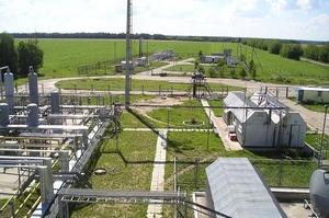 Regal Petroleum Новинського скоротила чистий прибуток у 4,5 рази за минулий рік