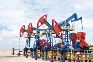 РФ готова скоротити видобування максимум на 2 млн б / д в межах угоди ОПЕК+ - Reuters
