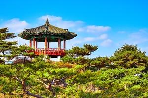 Південна Корея переживає найбільший економічний спад з 2008 року