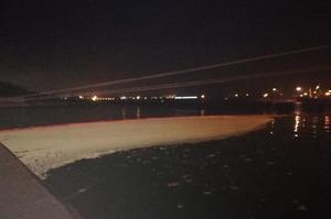 В Одеському порту в море вилилось більше 8 тонн пальмової олії
