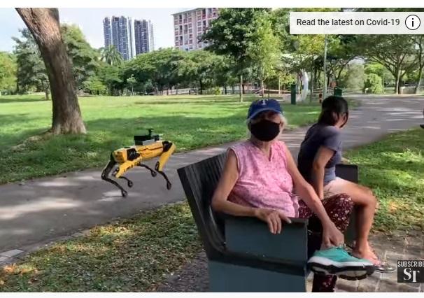 Влада Сінгапуру запросила робособаку BD стежити за дистанцією між людьми (ВІДЕО)