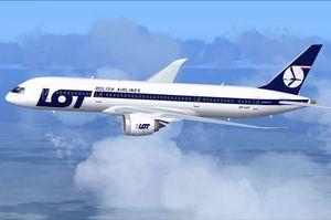 Польська авіакомпанія LOT відновлює пасажирські авіаперевезення по країні