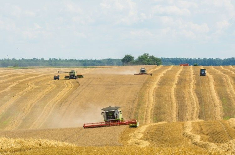 Агрохолдинг Герег викупив активи «Сварог Вест Груп» в Хмельницькій області