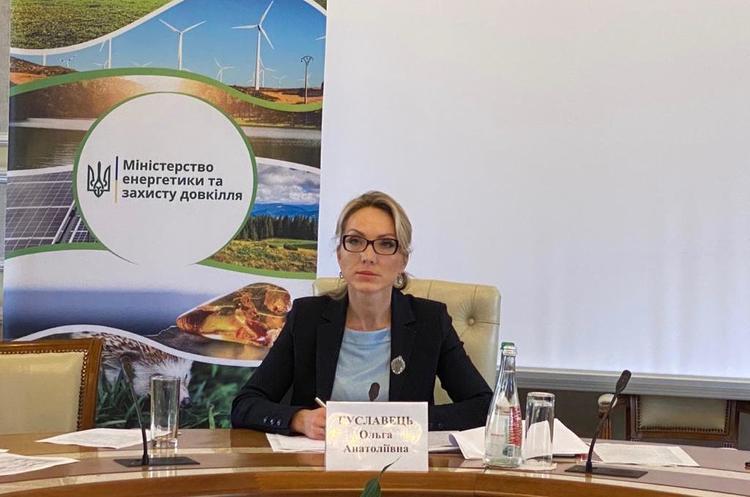 Інвестори ВДЕ та уряд близькі до компромісу щодо більшості положень меморандуму — Буславець