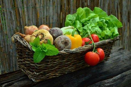 Врожайний карантин: як фермери пережили період обмежень