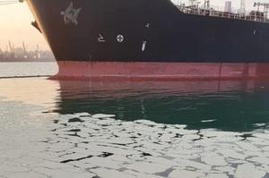 Новий глава екоінспекції відпустив без штрафу судно, яке вилило 8 тонн пальмової олії в море – Фірсов