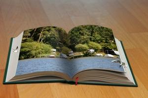 Соціальна дистанція з користю: 5 книжок для продовження саморозвитку