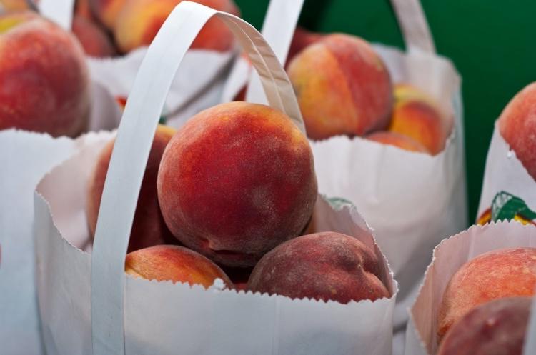 Сезон збирання ранніх персиків стартував в Україні