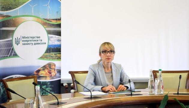 До 2023 року держава дозволить побудувати ще 1 ГВт вітрової електроенергії – Буславець