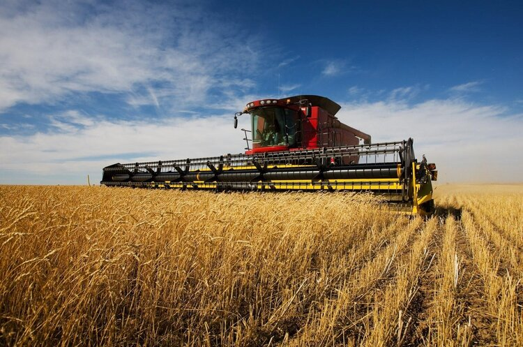 Україна оновила рекорд з експорту зернових