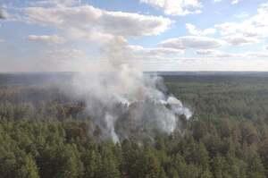 Лісову пожежу на Луганщині вдалося локалізувати