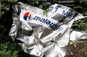 Нідерланди подадуть до суду на Росію через збитий над Донбасом Boeing