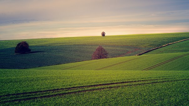 На земельні паї треба оформити право власності – Мін'юст