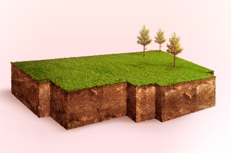 Розбивка по квадратах: як протеже президента змінює роботу земельного відомства