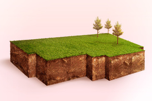 Разбивка по квадратам: как протеже президента меняет работу земельного ведомства